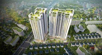 Nên mua đất nền hay chung cư?